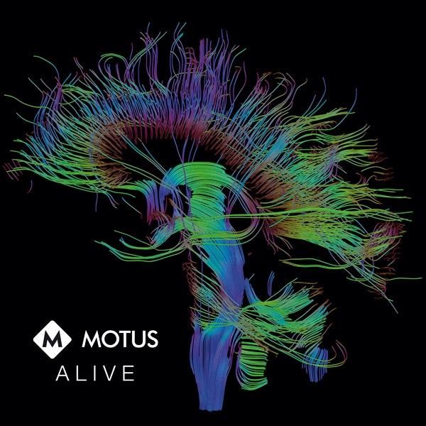 MOTUS Alive